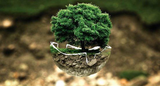 medio-ambiente-desarrollo-sostenible-sector-profesion-colombia