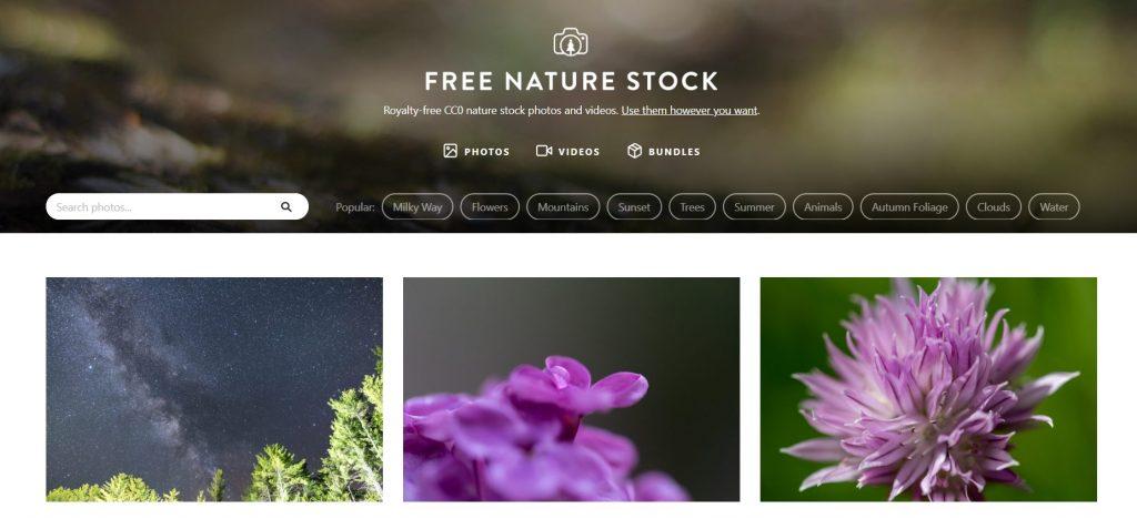 imagenes-gratis-en-stock